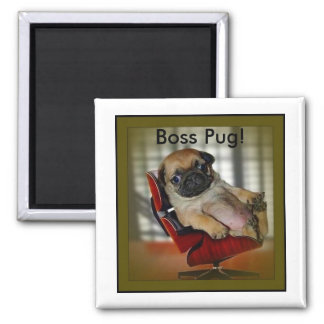 Boss Pug! 2 Inch Square Magnet
