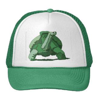 boss turtle trucker hat