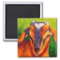 Bossy Boots - Baby Goat Magnet