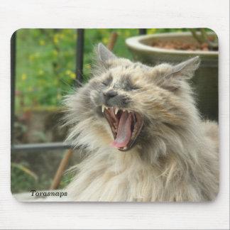 Bostezo del gato tapetes de raton