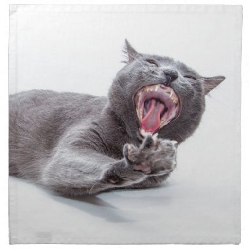 Bostezo soñoliento del gatito servilletas