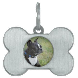 Boston adorable Terrier Placa De Nombre De Mascota