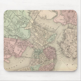 Boston and Vicinity Mouse Pad