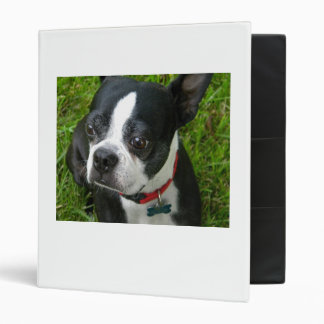 Boston Binder