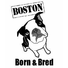 Boston Born & Bred t-shirt shirt