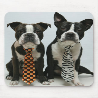 Boston brothers Mousepads