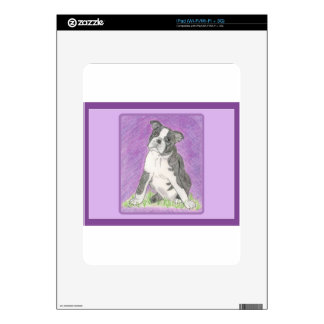 Boston Bull Dog Decals For The iPad