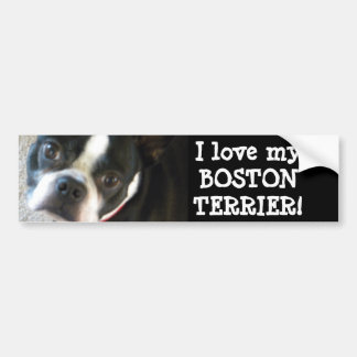 BOSTON bumper sticker Car Bumper Sticker