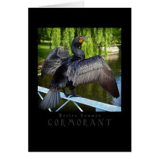 Boston Common Cormorant Card
