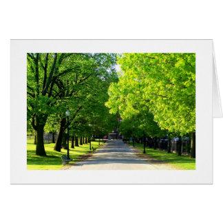 Boston Common in Spring Card
