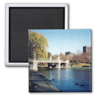 boston common magnet