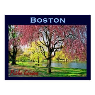 Boston Common Postcard - Customized