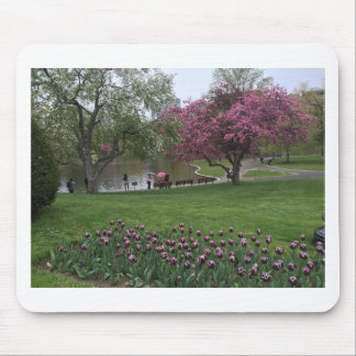 Boston Commons Mouse Pad