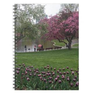 Boston Commons Notebook