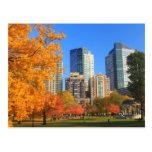 Boston común en otoño postal