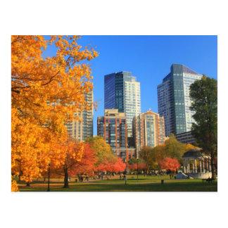 Boston común en otoño tarjetas postales