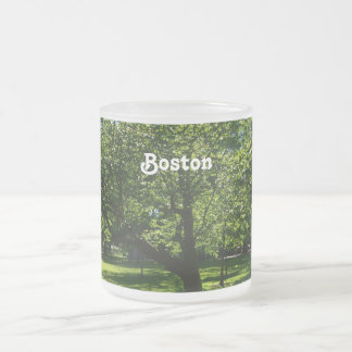 Boston Garden 10 Oz Frosted Glass Coffee Mug