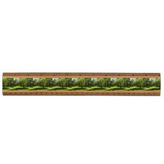 Boston Garden Maple Ruler