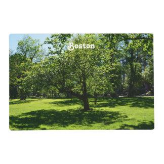 Boston Garden Laminated Placemat