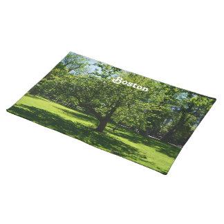 Boston Garden Cloth Placemat