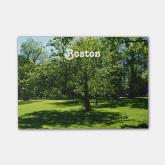 Boston Garden Post-it® Notes