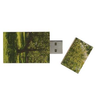 Boston Garden Wood USB 2.0 Flash Drive