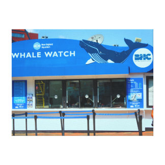 Boston Harbour Whale Watch tour Wrapped Canvas