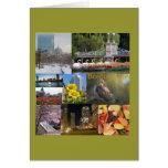 Boston, MA Photo Collage by Celeste Sheffey Card