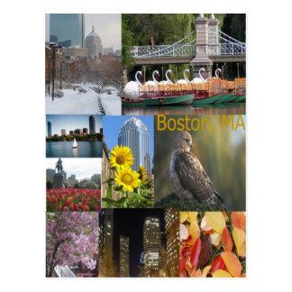 Boston, MA photo collage Postcard