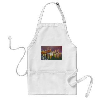 boston ma skyline at night adult apron