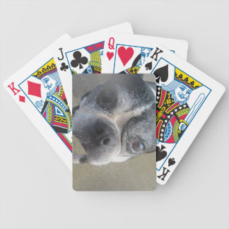 boston on the beach bicycle playing cards