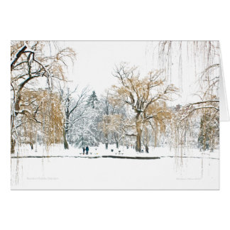 Boston Public Garden Card