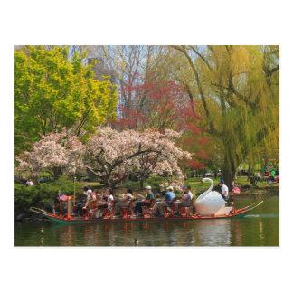 Boston Public Garden Swan Boat in Spring Postcard
