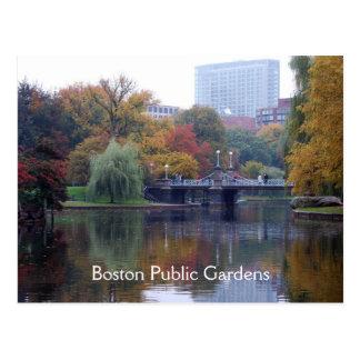 Boston Public Gardens Postcard