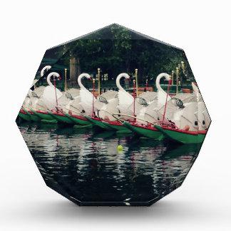 Boston Public Gardens Swan Boats Award