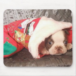 Boston Pup in Christmas Stocking Mouse Pad