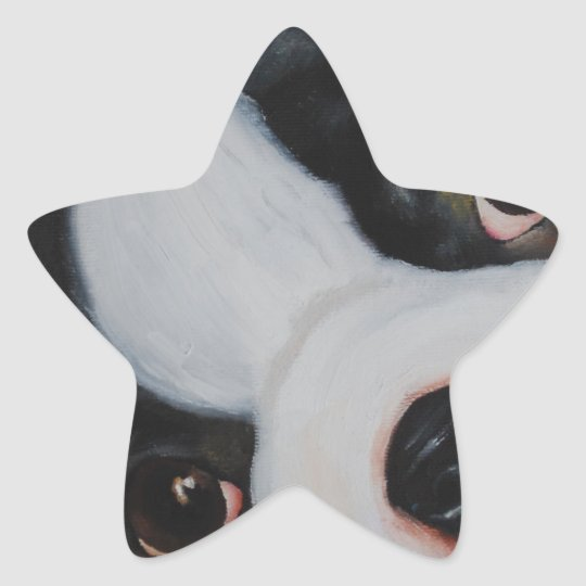 boston pup.jpg star sticker