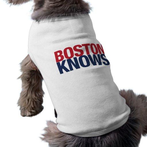 Boston sabe camiseta de perro