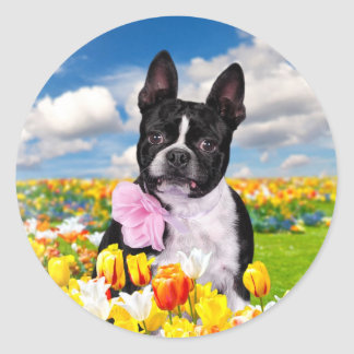 Boston Spring Time Classic Round Sticker
