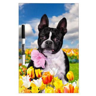 Boston Spring Time Dry-Erase Whiteboard