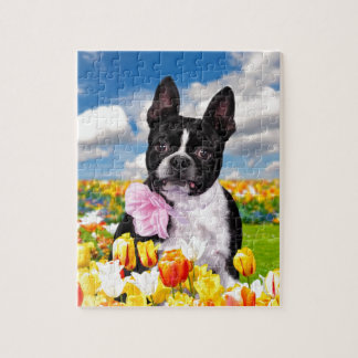 Boston Spring Time Jigsaw Puzzle