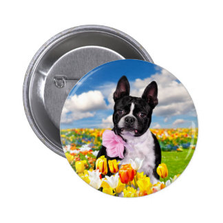 Boston Spring Time Pinback Button