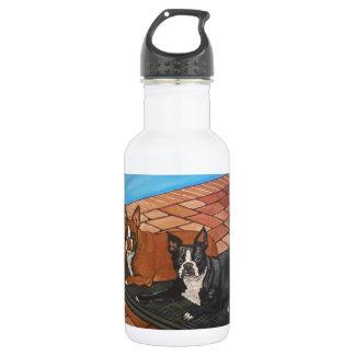 Boston Sunbathing Water Bottle