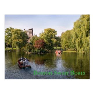 Boston Swan Boats Postcard