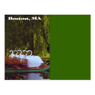 Boston Swan Boats - Summer Postcard
