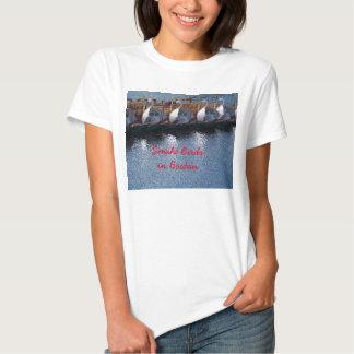 Boston Swan Boats T Shirt
