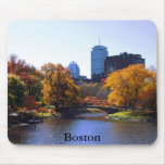 Boston Tapete De Raton