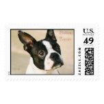 boston-terrier-0239, Boston Terrier Sello Postal
