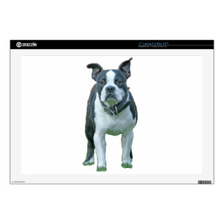 "Boston terrier  1b 17"" laptop decals"