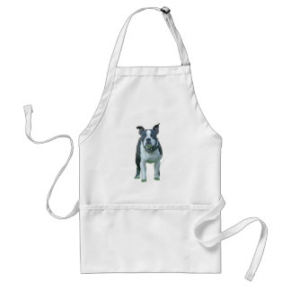 Boston terrier  1b adult apron